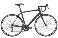 Bergamont BGM Bike Prime 4.0 - black/grey/blue (matt) - 56 cm - Fahrradladen in Berlin » Fahrrad-Krause.de