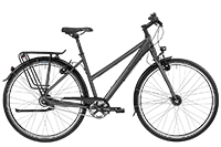Bergamont BGM Bike Vitess N8 Lady - dark silver/silver (matt) - 48 cm - Fahrradladen in Berlin » Fahrrad-Krause.de